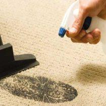 Чистка ковров и обивки