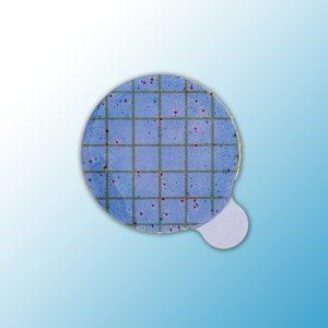 Диски для Подтверждения Staph.aureus на тест-пластинах Petrifilm™ STX, 6493, 20 шт/пакет, 5 пакета/уп, 1уп/ящ